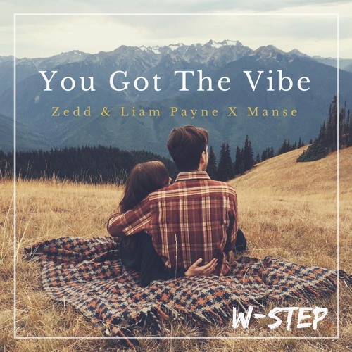 You Got The Vibe (W-STEP) (Kyros Collective Promo)