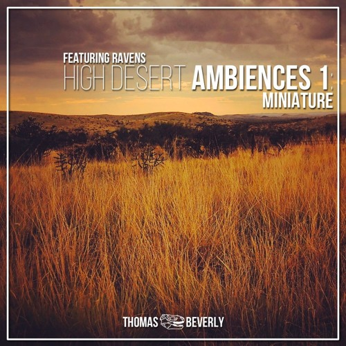 AMB06 High Desert Ambiences 1: Miniature | SFX Library Demo