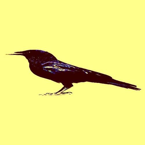 An Extended Crow (Junklight remixed by Pedantic Pedestrian)
