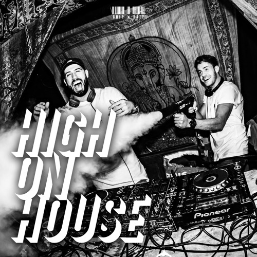 Chip X Dale - High On House