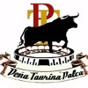PLAZA DE TOROS DE PALCA (PASODOBLE)