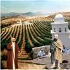 Sohbet4917 - IbnArabi - Umaralqarqari - D