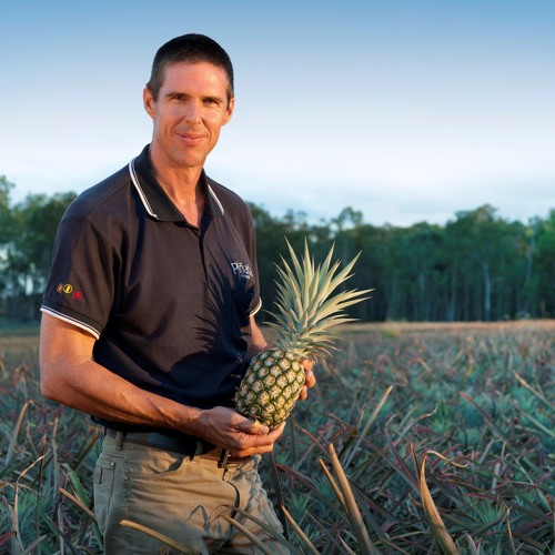 The Aussie Pineapple Pioneer (Wednesday, December 13, 2017)