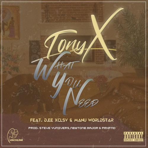 Tony X ft. DEE XCLSV x Manu Worldstar - What You Need