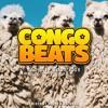 Andrew Mathers - Congo Beats Radio #028 2017-12-07 Artwork