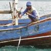 15 Ribu Nelayan Cirebon Dapat Asuransi Kecelakaan Gratis