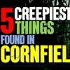 Episode 320 - 5 CREEPIEST Things Found In Cornfields