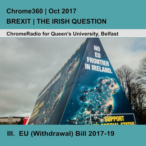 Chrome360   BREXIT-THE IRISH QUESTION   EU (Withdrawal) Bill - Professor Colin Harvey   7 Oct 2017