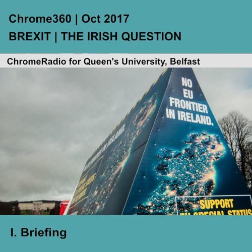 Chrome360   BREXIT-THE IRISH QUESTION   Briefing - Professor David Phinnemore   1 Oct 2017