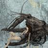 Rak Marko Leshy O Father O Satan O Sun Behemoth Cover Mp3