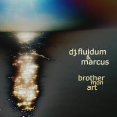 Fluidum & Marcus - Brother_Mon Art