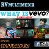 What Is VEVO? (Hindi Audio)