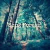 Song Forest