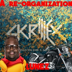 Skrillex and Poo Bear -Would You Ever(Lunez re-organization)