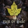 Run or Hide (Run River North cover)
