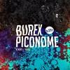 Exid | 050 : Burex b2b Piconome