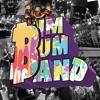 Bryger - sigla covered by Bim Bum Band