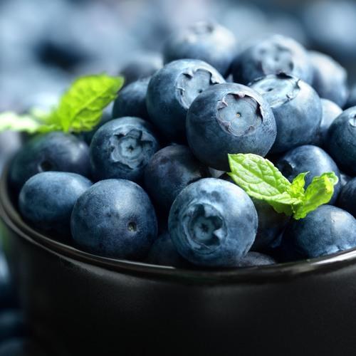 Cómo financiar proyectos de arándanos y otros berries (Agrobanco) (1)