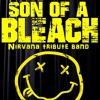 breed Nirvana cover by son of a bleach