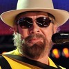 Hank Williams Jr - All My Rowdy Friends Have Settled Down (Cover)
