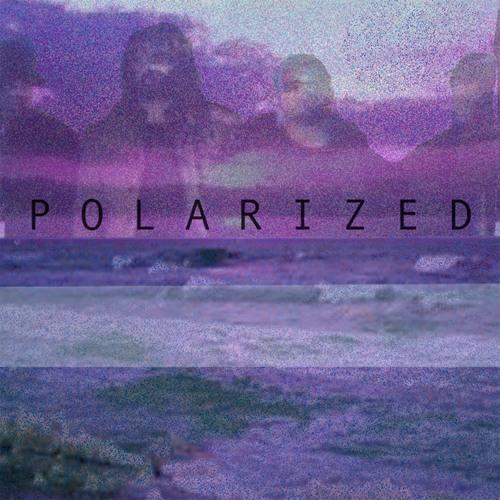 Sunstinger - Polarized