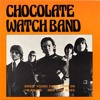 The Chocolate Watch Band - Sweet Young Thing (1967) Psychedelic Rock (Vinyl LP)