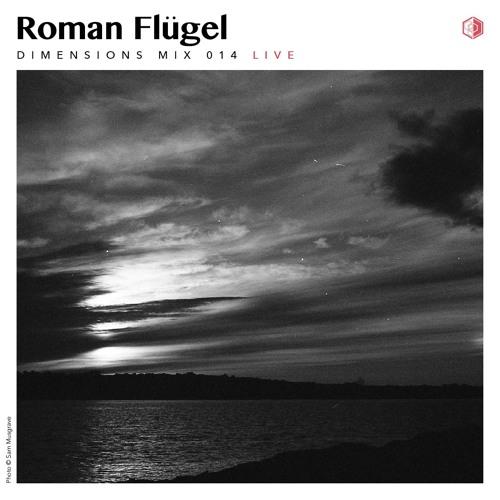 DIM014 - Roman Flugel (Live 2013)