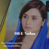 Dil E Nadan Drama OST | Dil-E-Nadan Title Song | Express Entertainment Drama