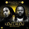 "Winning Jah feat. Stephen Marley ""Now I Know (Made in Africa Version) [Enorecords SNC]"