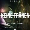 Sanie - Silla Keine Tränen Coverversion mp3