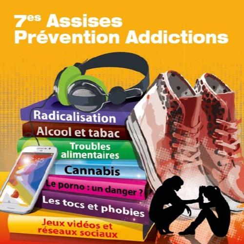 Assises prévention addictions - Ancenis 2017 - Plénière 1 Ivana Obradovic
