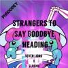 Seven Lions x Slushii - Strangers To Say Goodbye [Mashup]