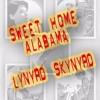 Sweet Home Alabama (Lynyrd Skynyrd)