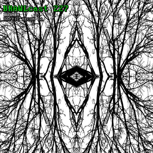 BRAWLcast 227 Bushby - Haptic Recon 11