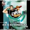 Шура - Ты Не Верь Слезам (Ice & Dj Gonzalez Remix) Radio Mix