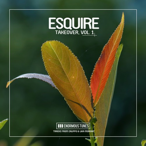eSQUIRE Take Over Vol 1 ( OUT NOW @ Beatport )
