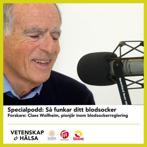 Specialpodd: Så funkar ditt blodsocker