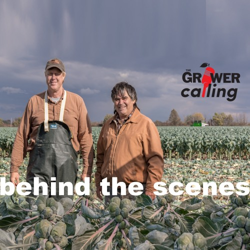 """""""Behind the Scenes"""" Dave VanSegbrook talks brussels sprouts"""
