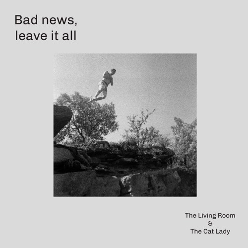 The Cat Lady- Leave It All