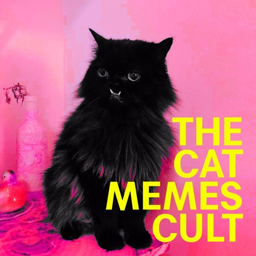 The Cat Memes Cult - Princess Monster Truck