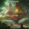 Download nulabee - Shivers (feat. Casey Cook) Mp3