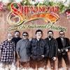 Marty Raybon of Shenandoah Talks New Album and Holiday Show