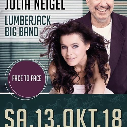 Stefan Gwildis Live - Stadthalle Dillingen Teaser