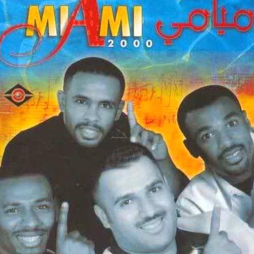 فرقة ميامي بستانس