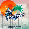 Chemical Disco, ANICIO - Luv Forever (Original Mix)