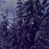 LIL PHAG - Gucci Christmas (Official Lyric Video) Ft. Dr Woke