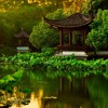 Bodhi Sanders - Japanese Garden Meditation [1hour]