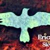 Erica Owns The Sky - Feels Like I'm Trippin (Sams Bored Instrumental) *Lyrics in description*