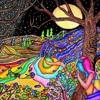 Nachtvogel - Yes I Am (Original Mix) FREE DOWNLOAD
