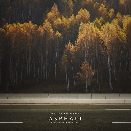 Asphalt (DJI WRC Germany 2017 Soundtrack)